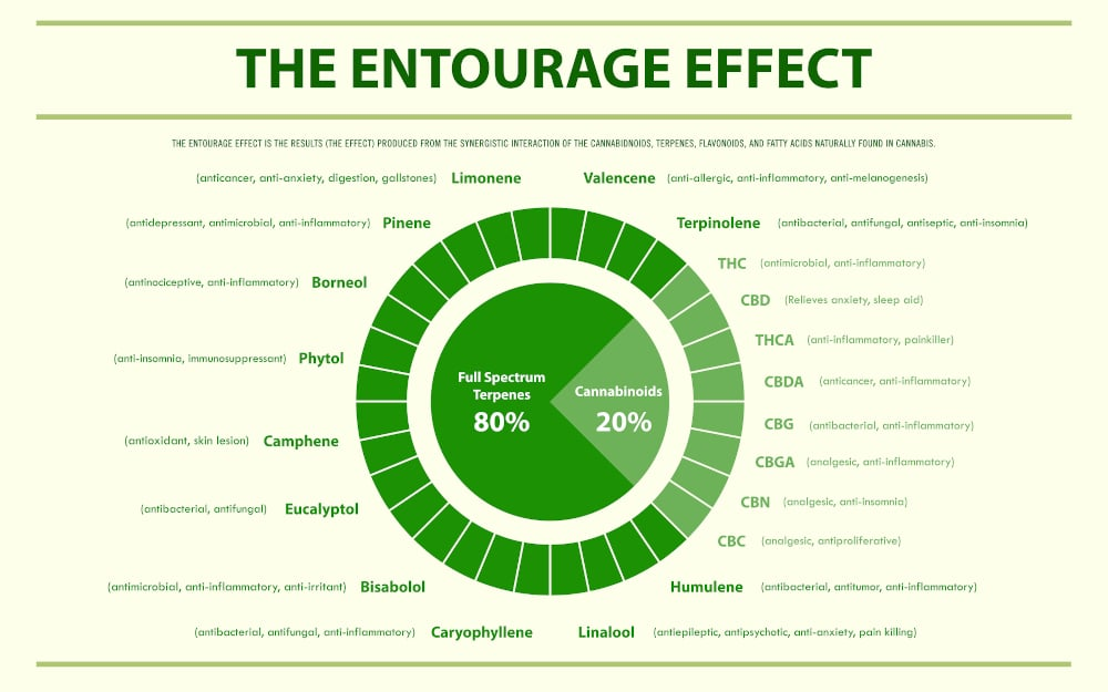 Cannabis Entourage Effect