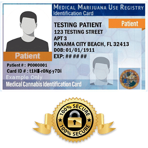 Florida Marijuana ID Card Example