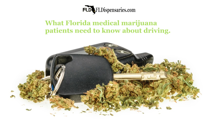 what Florida medical marijuana patients need to know about driving