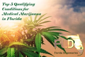 Florida top 5 medical conditions