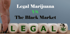 Will The Legal Marijuana Market Size Up to Black Market?