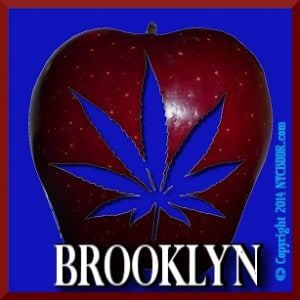 Brooklyn Marijuana Cannabis