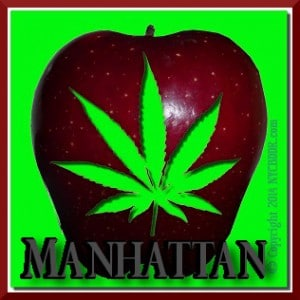 Manhattan Marijuana Cannabis