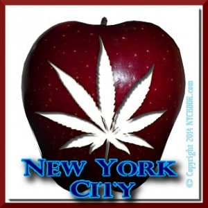 NYC Marijuana Cannabis