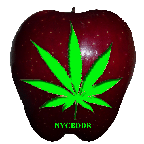 New York Dispensaries and Doctors